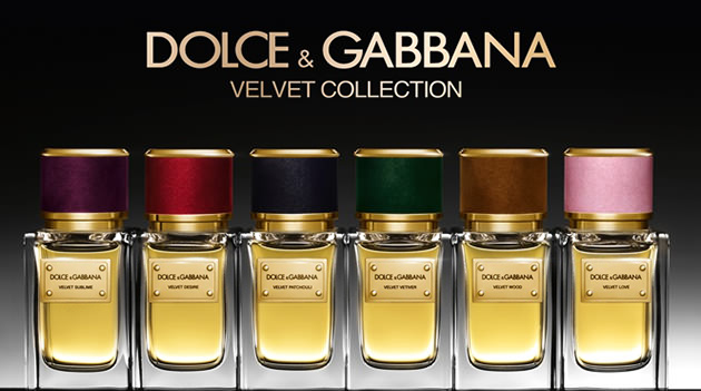 Nước hoa D&G Velvet Patchouli - Photo 4